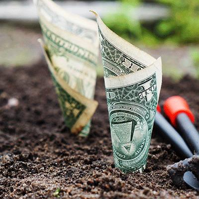 Taller de dinero y abundancia